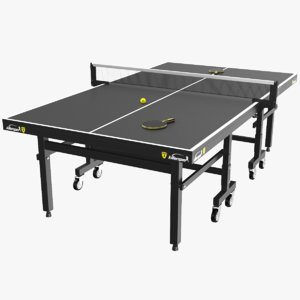 real ping pong table 3D model