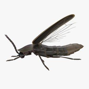 firefly pbr model