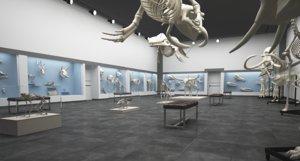 skeleton museum 3D