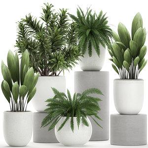 3D model ornamental plants white