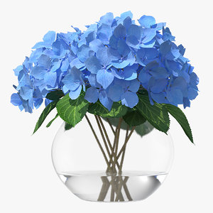 3D hydrangea macrophylla nikko blue glass model