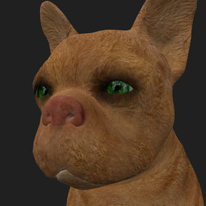 3D model rigged dog sits place