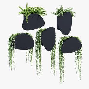 pavo planters plants 3D model