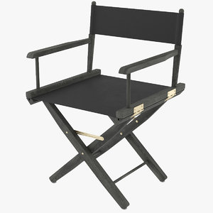 director s chair 3D