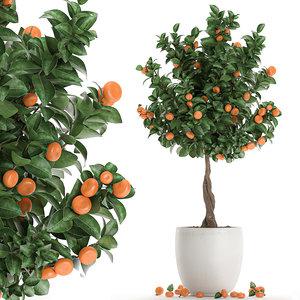decorative tree interior white 3D model