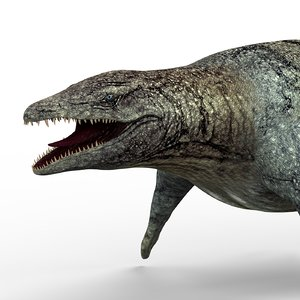 3D mosasaurus dinosaur