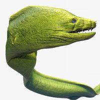Moray Eel - Rigged