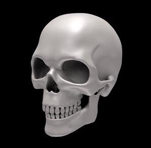 3D jaw teeth head model
