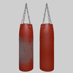 worn punching bag new model