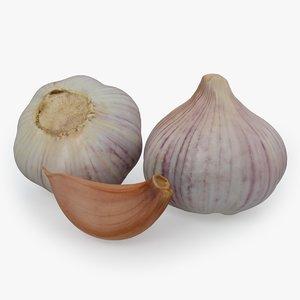 3D garlic food vegetable