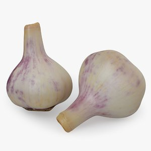 garlic food vegetable 3D model
