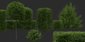 3D shrubs pack model