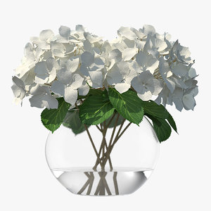3D white hydrangea macrophylla glass bowl model