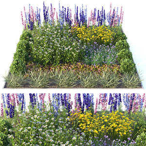 flowerbed flowers 3D model