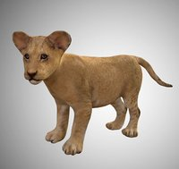 Realistic Baby Lion Cub Low Poly