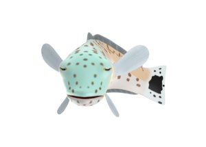 speckled sand perch fish toon 3D model