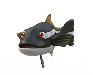 cobia fish toon animation 3D