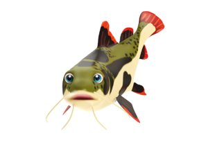 3D red tail cat fish toon model