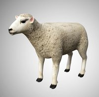 Realistic High Detailed Rigged Low Poly Sheep