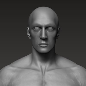 3D anatomically correct male