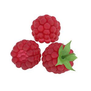 3D raspberry berry