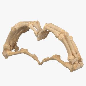 human hand bones heart 3D model