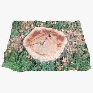 stump 002 scan 3D model
