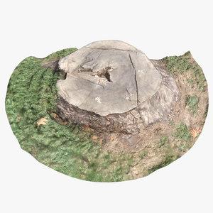stump 003 scan model