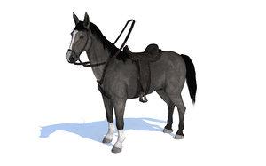 3D horse black animation model
