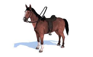 horse chestnut animation 3D model