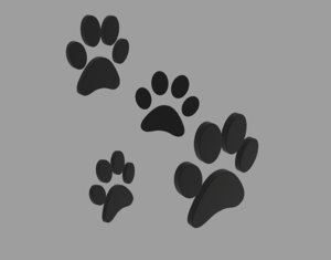3D black paw