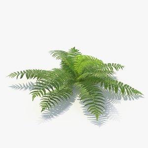 3D 01 leaves v-ray