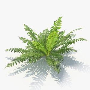 3D 02 leaves v-ray