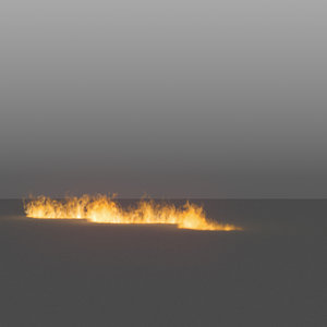 3D burning flames 15 vdb
