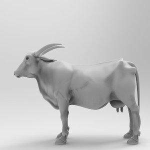 animal cow nature model