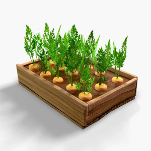 3D carrots vegetable bed model