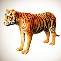 Realistic Low Poly Rigged High Detailed Bengal Tiger