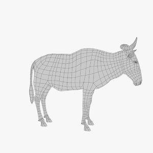 wildebeest wild 3D model