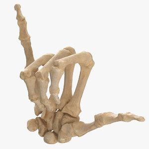 human hand bones hang model