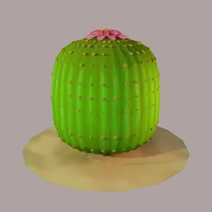 stylized cactus parodia magnifica 3D