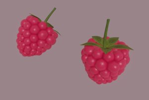 3D raspberry fruit food model