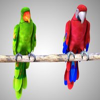Red Parrot Green Parrot Rigged Low Poly
