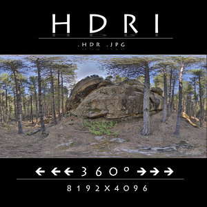 HDR FOREST ROCK 1