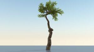 long tree 3D model