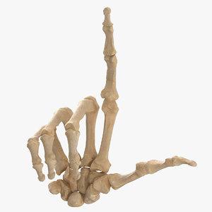 3D human hand bones loser