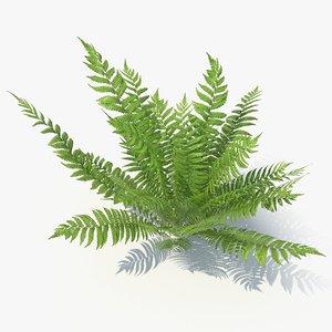 3D model 04 leaves v-ray