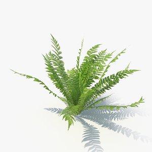03 leaves v-ray 3D model