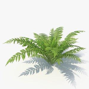 3D 05 leaves v-ray