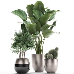 3D decorative plants interior model