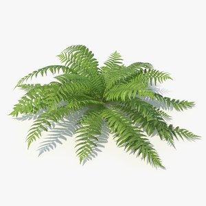 3D 06 leaves v-ray